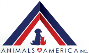 Animals America logo
